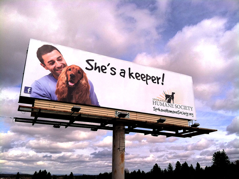She's A Keeper Billboard