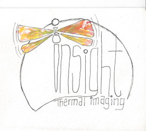 Insight Sketch